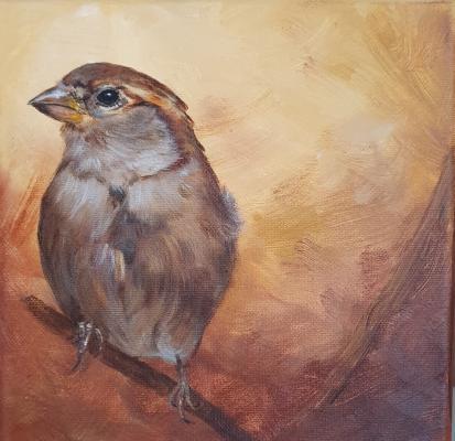 Mrs-Sparrow